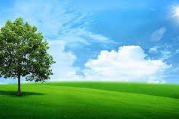 Xu hướng ưu tiên mô hình nhà xanh - Thân thiện môi trường